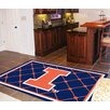 FANMATS Collegiate Illinois Area Rug
