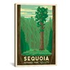 iCanvas Anderson Design Group Sequoia National Park Vintage Advertisment on Canvas