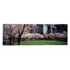 iCanvas Panoramic Trees in a Park, Central Park, Manhattan, New York City, New York State Photographic Print on Canvas