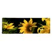 iCanvas Panoramic Sunflowers Photographic Print on Canvas
