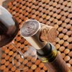 JDS Personalized Gifts Personalized Gift Buono Vino Wine Stopper