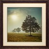 North American Art 'It's a New Day' by Assaf Frank Framed Photographic Print