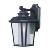 Maxim Lighting Radcliffe 1 Light Wall Lantern