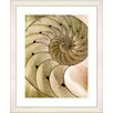 "Studio Works Modern ""Sea Cambrian - Sepia"" by Zhee Singer Framed Fine Art Giclee Painting Print"