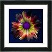 "Studio Works Modern ""Fire Flower"" by Zhee Singer Framed Fine Art Giclee Painting Print"