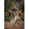 Desert Steel Passion Flower with Three Torches