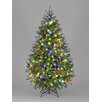 Hometime Snowtime  6.6' Green Pre-Lit Carolina Pine Artificial Christmas Tree with 350 Color LEDs
