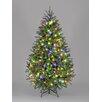 Hometime Snowtime 7.5' Green Pre-Lit Carolina Pine Artificial Christmas Tree with 650 Color Lights