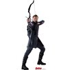Advanced Graphics Avengers Age of Ultron Hawkeye Cardboard Standup