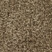 Chandra Rugs Ensign Brown Area Rug