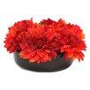 Dalmarko Designs Giant Dahlia in Bowl