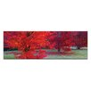 Artist Lane Bright Reds by Andrew Brown Wrapped Photographic Print on Canvas