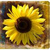"Gallery Direct ""Sunflower"" by Sia Aryai Painting Print on Wrapped Canvas"