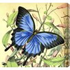 Gallery Direct Butterflies 27 Painting Print on Wrapped Canvas