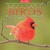TFPublishing 2016 Backyard Birds Wall Calendar