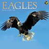 TFPublishing 2016 Eagles Wall Calendar