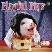 TFPublishing 2016 Playful Pigs Mini Calendar