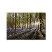 Graham & Brown Portfolio Bluebell Landscape Printed Photographic Print on Canvas
