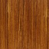 "Westhollow Premier 3-3/4"" Solid Bamboo Hardwood Flooring in Tiger"