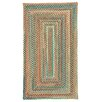 Capel Rugs Jennie Lake Concentric Braided Saddle Area Rug