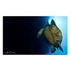 Ready2hangart 'Maui Turtle Blue' by Chris Doherty Oversized Wrapped Canvas Wall Art