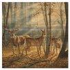 WGI-GALLERY Woodland Spendor Painting Print on Wood