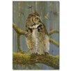 WGI-GALLERY Fearlous Owl and Hummingbird Painting Print on Wood