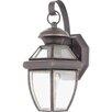 Illumina Direct 1 Light Wall Lantern