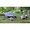 Stone Age Creations Granite Galapagos Tortoise Statue
