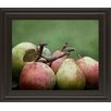 Classy Art Wholesalers Comice Pear II by Rachel Perry Framed Photographic Print