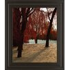 Classy Art Wholesalers Autumn Snow I by Alicia Suave Framed Photographic Print