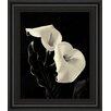 Classy Art Wholesalers Botanical Elegance Calla IV by Amy Melious Framed Photographic Print