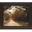 Classy Art Wholesalers Savannah Oaks I by Alan Hausenflock & Mossy Oak Nativ Living Framed Photographic Print