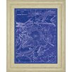 Classy Art Wholesalers Arctic Map by The Vintage Collection Framed Graphic Art