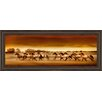 Classy Art Wholesalers Argentine Horses by Bobbie Goodrich Framed Photographic Print
