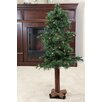 Northlight Seasonal 1.75' Traditional Woodland Alpine Artificial Christmas Tree with 50 Clear Light