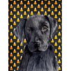 Caroline's Treasures Labrador Candy Corn Halloween Portrait 2-Sided Garden Flag