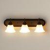 Charlton Home Daundelyon 3-Light Vanity Light