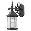 Charlton Home Altagore 1 Light Wall Lantern