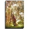 Bashian Home Fairy Tree by Jenndalyn Photographic Print on Canvas