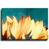 Bashian Home Cool flowers by Terri Ellis Photographic Print on Gallery Wrapped Canvas