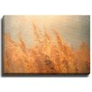Bashian Home Heartland by Terri Ellis Photographic Print on Gallery Wrapped Canvas