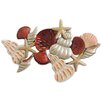 Beachcrest Home Shells and Starfish Wall Décor