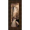 Midwest Art and Frame A Quiet Stroll I by Ily Szilagyi Framed Photographic Print