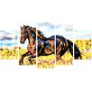 Design Art Ride Free 5 Piece Graphic Art on Wrapped Canvas Set