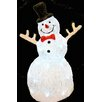 Seasons Designs Acrylic LED Snowman Light