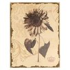 Mario Industries Antiqued Floral Painting Print on Wrapped Canvas