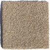 """Zen Creekbed 24"""" x 24"""" Carpet Tile in Creekbed"""