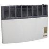 Ashley 17,000 BTU LP Gas Direct Vent Heater