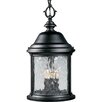 Progress Lighting Ashmore 3 Light Outdoor Hanging Lantern
